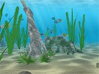 Подводная жизнь 3D. Нажмите для увеличения