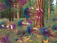 Amazing Bubbles 3D screensaver screenshot. Click to enlarge
