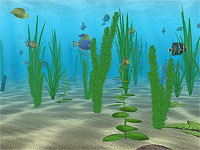 Water Life 3D screensaver screenshot. Click to enlarge
